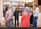 Golshiri, Barbad - 2015 - Curriculum Mortis - Aaran Gallery in Tehran, Iran - 16