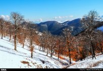 Gilan, Iran – Autumn - Snow in Talesh 05