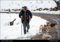 Gilan, Iran – Autumn - Snow - Mountains near Masal 04