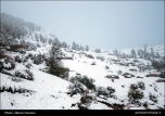 Gilan, Iran – Autumn - Snow - Mountains near Masal 16