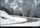 Gilan, Iran – Autumn - Snow - Mountains near Masal 18