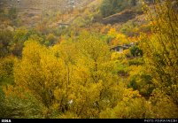 Autumn nature in Hamedan Province, Iran (Photo credit: Pouria Pakizeh / ISNA)