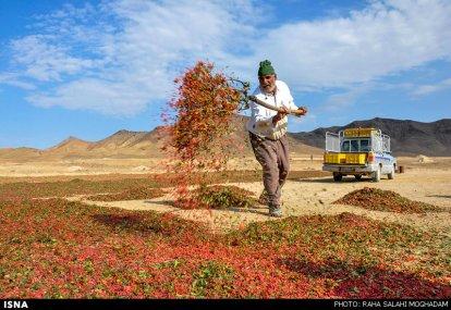 Foto: Raha Salahi Moghadam / ISNA