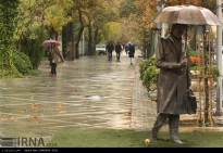 Tehran, Iran - Autumn nature - 40