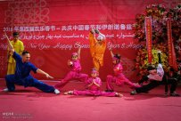 Tehran, Iran - Joint celebration of Chinese New Year and Nowruz at Niavaran Complex - 2016 - 04