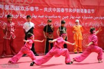 Tehran, Iran - Joint celebration of Chinese New Year and Nowruz at Niavaran Complex - 2016 - 14
