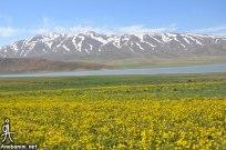 Chaharmahal and Bakhtiari, Iran - Ardal County - Beautiful nature in Landi Village 22