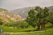 Chaharmahal and Bakhtiari, Iran - Ardal County - Beautiful nature in Landi Village 32