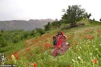 Chaharmahal and Bakhtiari, Iran - Ardal County - Beautiful nature in Landi Village 34
