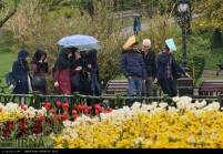 Tehran, Iran - Sudden spring rain in Tehran 16