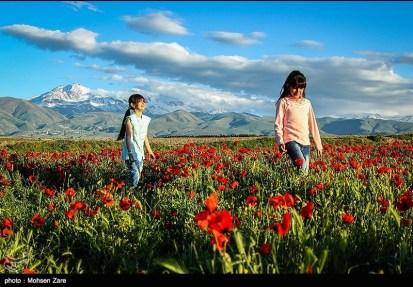 Ardabil, Iran - Spring days across Ardabil Province 10