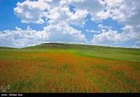 Ardabil, Iran - Spring days across Ardabil Province 11