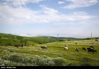 Ardabil, Iran - Spring days across Ardabil Province 22