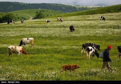 Ardabil, Iran - Spring days across Ardabil Province 27