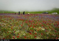 Ardabil, Iran - Spring days across Ardabil Province 28