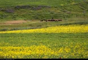 Ardabil, Iran - Spring days across Ardabil Province 96