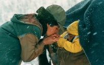 "Iranian film ""A time for drunken horses"" by Bahman Ghobadi (Zamani barayé masti asbha, 2000)"