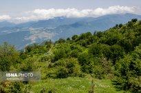 Semnan and Golestan Provinces, Iran - Cloud Forest (Jangal-e Abr) - 04