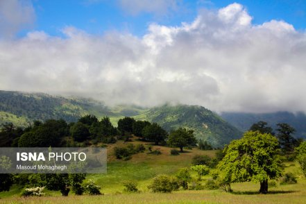 Semnan and Golestan Provinces, Iran - Cloud Forest (Jangal-e Abr) - 10