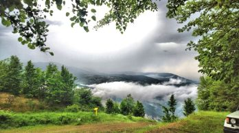 Semnan and Golestan Provinces, Iran - Cloud Forest (Jangal-e Abr) - 16