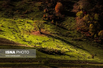 East Azerbaijan, Iran - Arasbaran in Autumn (Photo by Toohid Mehdizadeh, ISNA)