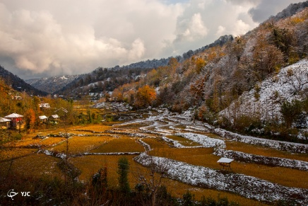 Autumn snow in Langarud - Gilan Province, Iran (Photo credits: Young Journalists Club)