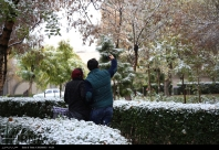 Autumn snow in Rasht - Gilan Province, Iran (Photo credits: IRNA)