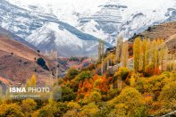 Tehran Province, Iran. Photo credit Seyyd Vahid Hosseini, ISNA